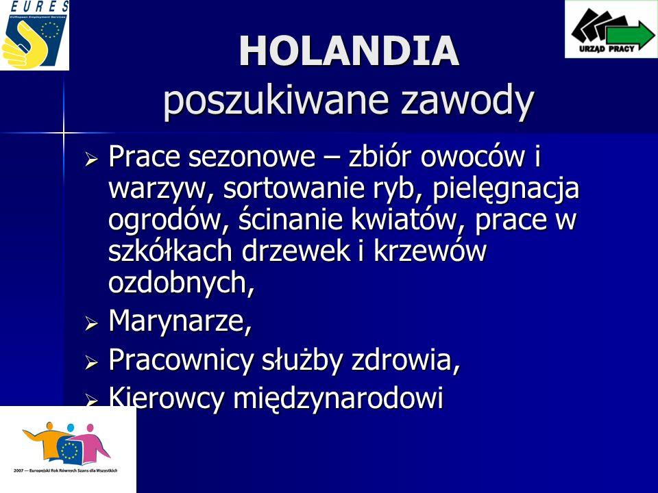 HOLANDIA poszukiwane zawody