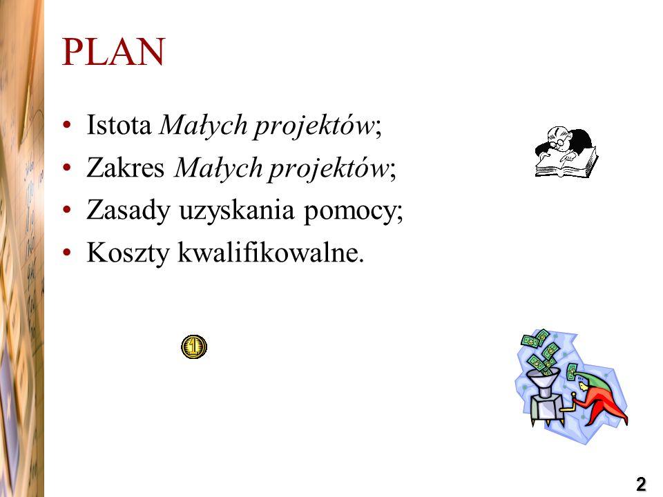 PLAN Istota Małych projektów; Zakres Małych projektów;