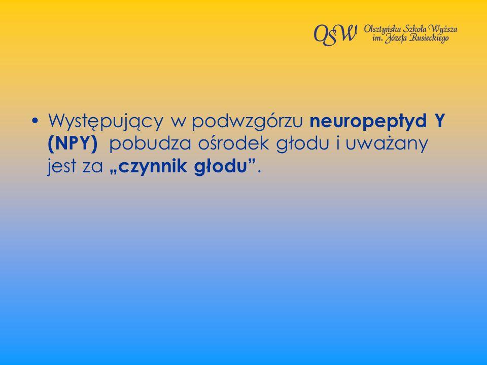 """Występujący w podwzgórzu neuropeptyd Y (NPY) pobudza ośrodek głodu i uważany jest za """"czynnik głodu ."""