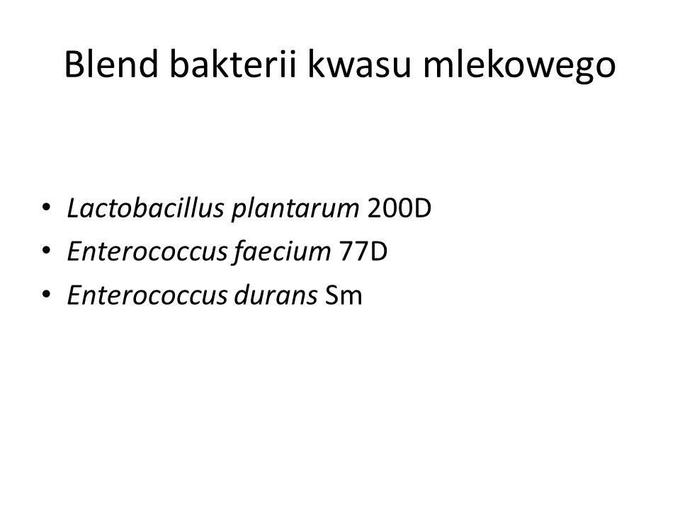 Blend bakterii kwasu mlekowego
