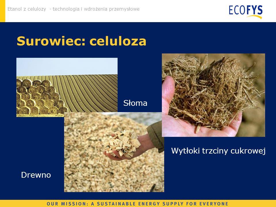 Surowiec: celuloza Słoma Wytłoki trzciny cukrowej Drewno