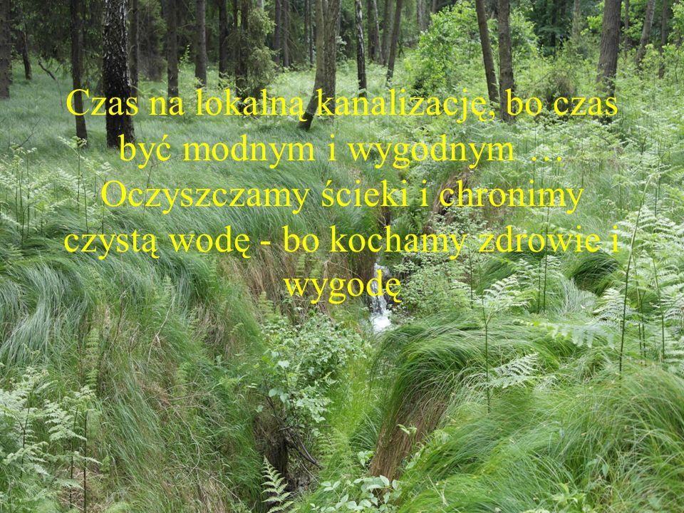 Czas na lokalną kanalizację, bo czas być modnym i wygodnym … Oczyszczamy ścieki i chronimy czystą wodę - bo kochamy zdrowie i wygodę