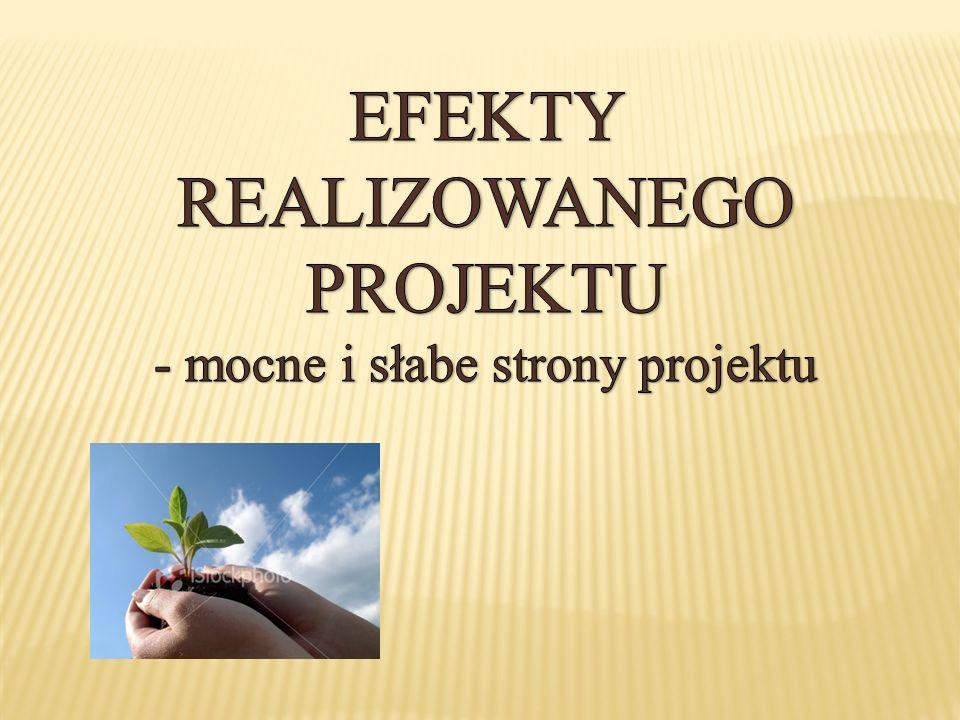 EFEKTY REALIZOWANEGO PROJEKTU - mocne i słabe strony projektu