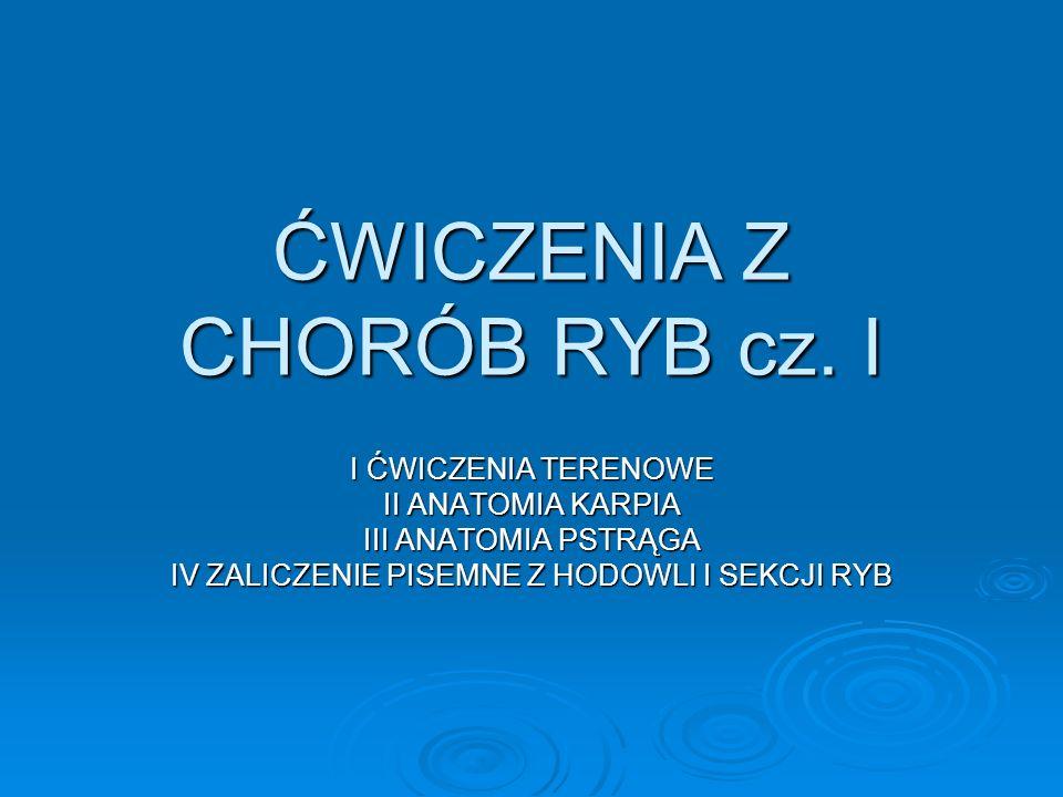 ĆWICZENIA Z CHORÓB RYB cz. I