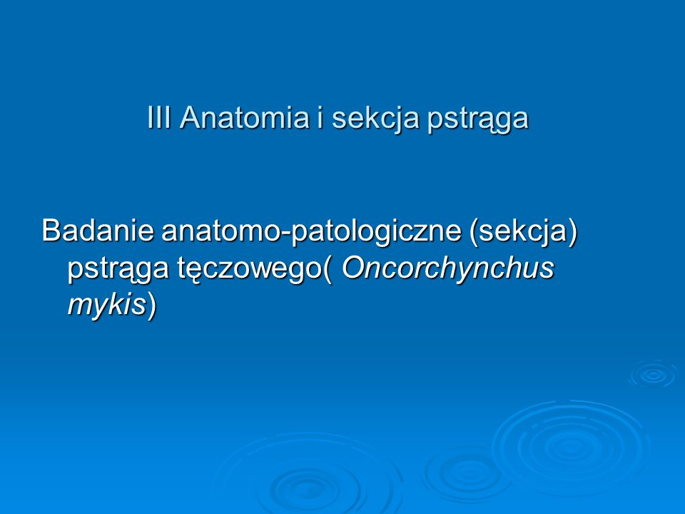 III Anatomia i sekcja pstrąga