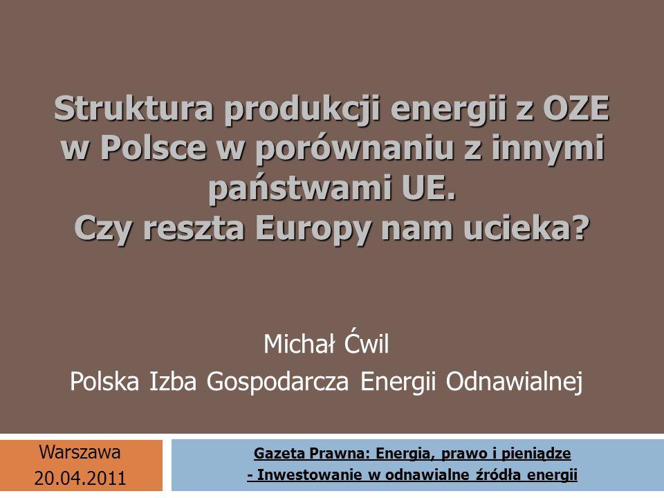 Michał Ćwil Polska Izba Gospodarcza Energii Odnawialnej