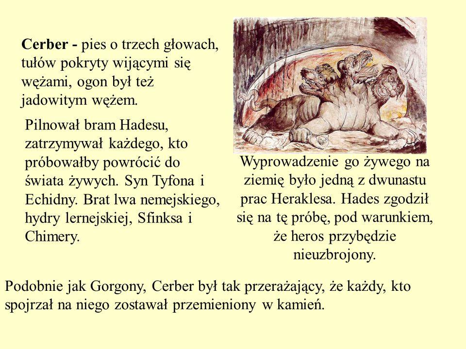 Cerber - pies o trzech głowach, tułów pokryty wijącymi się wężami, ogon był też jadowitym wężem.