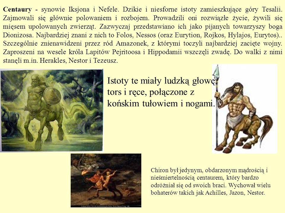 Centaury - synowie Iksjona i Nefele