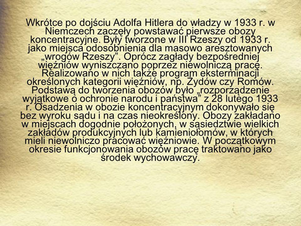 Wkrótce po dojściu Adolfa Hitlera do władzy w 1933 r