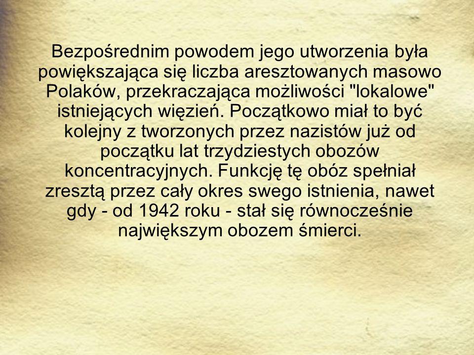 Bezpośrednim powodem jego utworzenia była powiększająca się liczba aresztowanych masowo Polaków, przekraczająca możliwości lokalowe istniejących więzień.