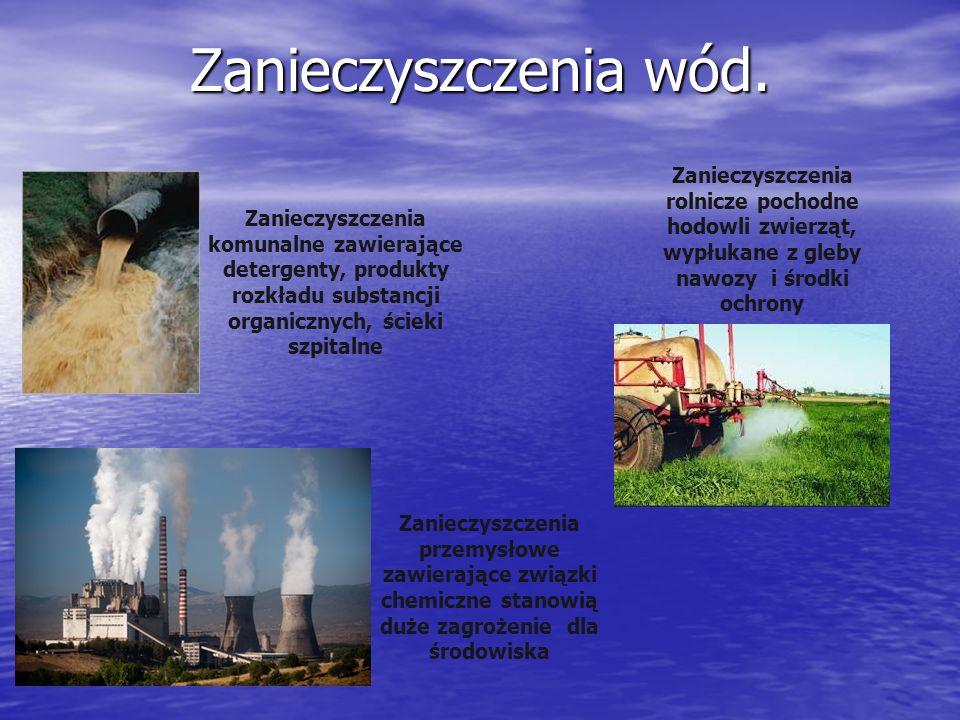 Zanieczyszczenia wód. Zanieczyszczenia rolnicze pochodne hodowli zwierząt, wypłukane z gleby nawozy i środki ochrony.