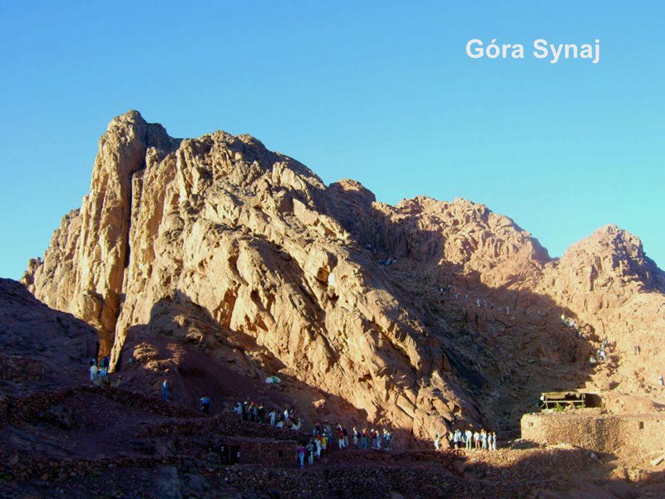 Góra Synaj