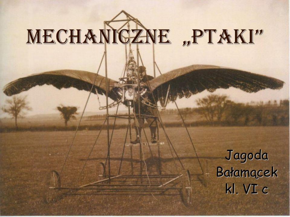 Jagoda Bałamącek kl. VI c