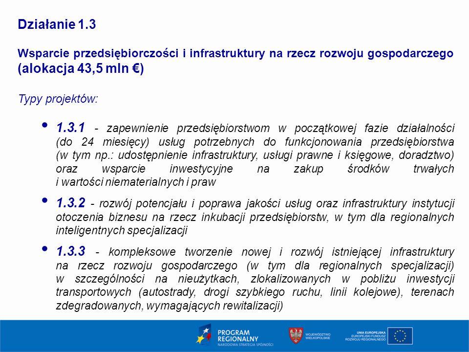 1313 Działanie 1.3. Wsparcie przedsiębiorczości i infrastruktury na rzecz rozwoju gospodarczego (alokacja 43,5 mln €)