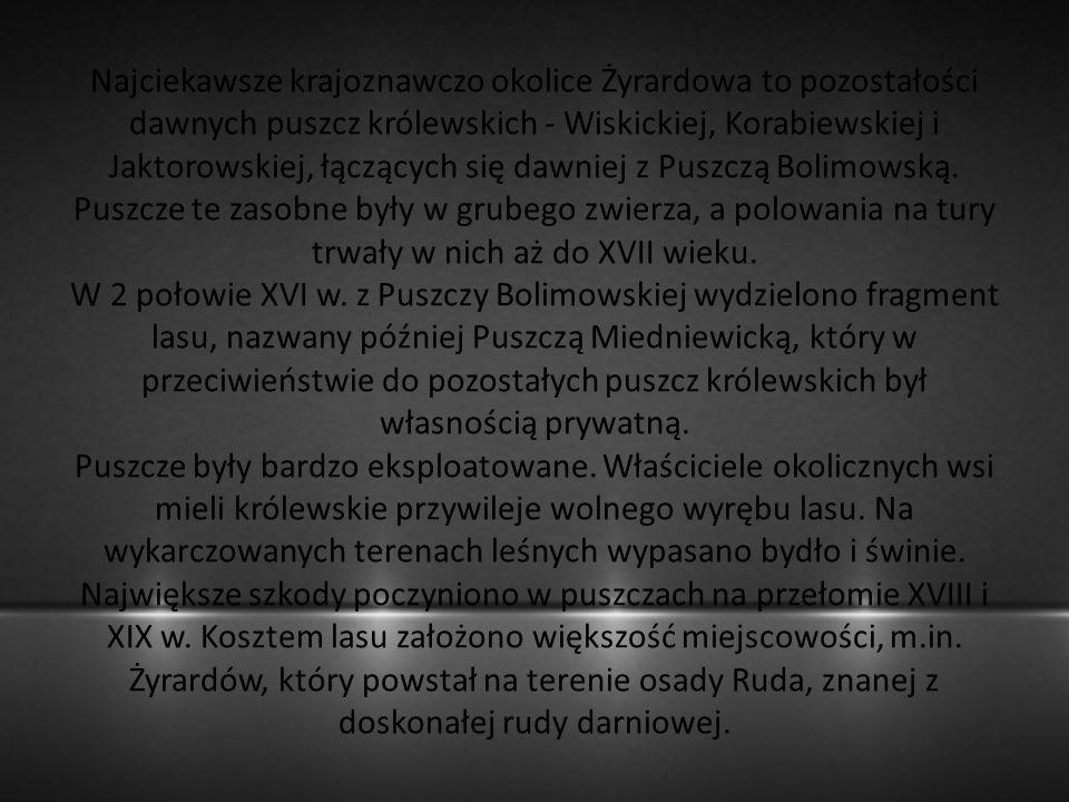 Najciekawsze krajoznawczo okolice Żyrardowa to pozostałości dawnych puszcz królewskich - Wiskickiej, Korabiewskiej i Jaktorowskiej, łączących się dawniej z Puszczą Bolimowską.