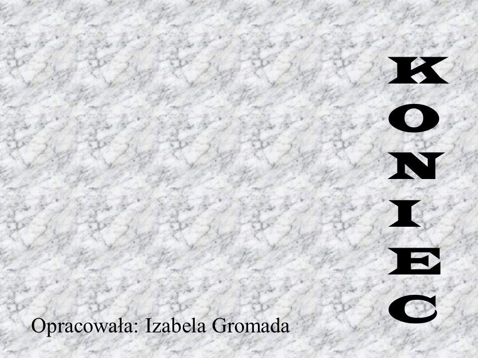 KONIEC Opracowała: Izabela Gromada