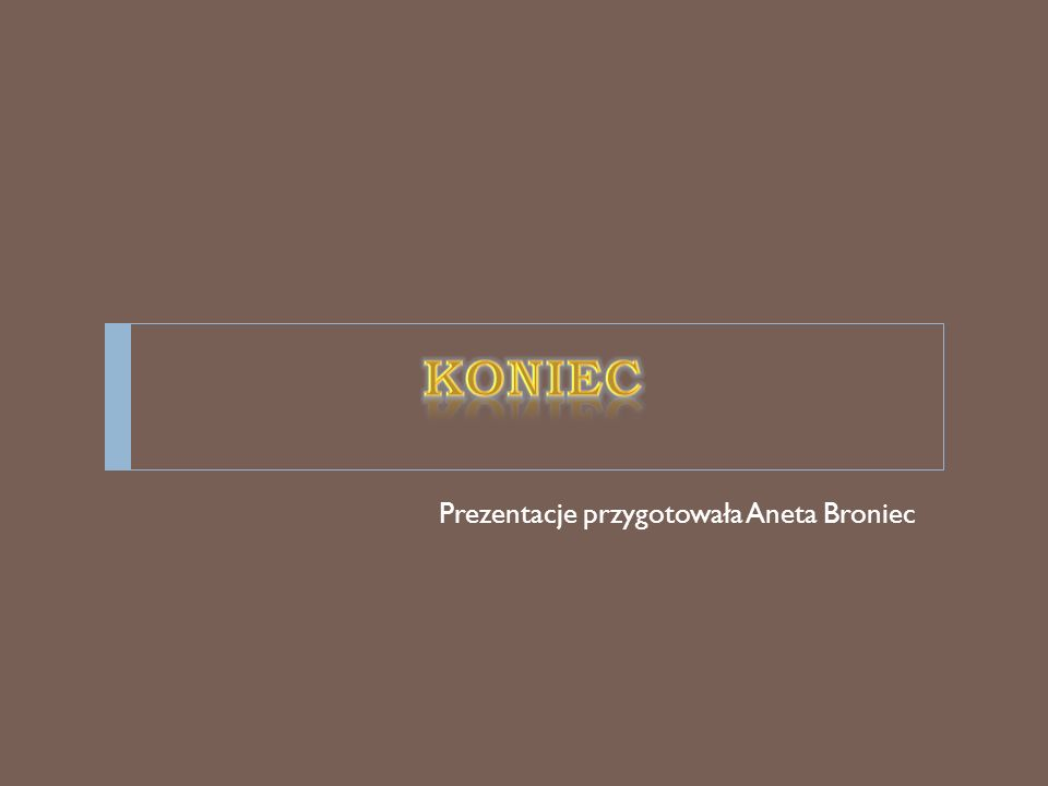 KONIEC Prezentacje przygotowała Aneta Broniec