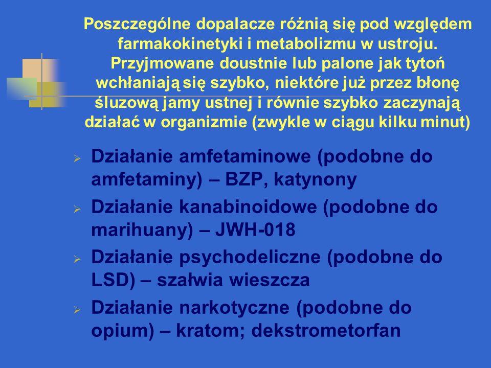 Działanie amfetaminowe (podobne do amfetaminy) – BZP, katynony