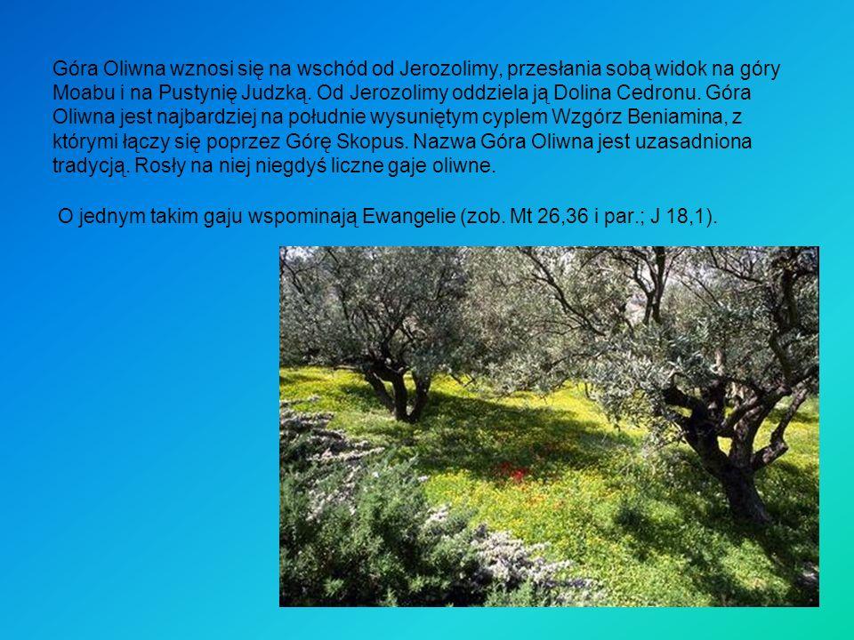 Góra Oliwna wznosi się na wschód od Jerozolimy, przesłania sobą widok na góry Moabu i na Pustynię Judzką.
