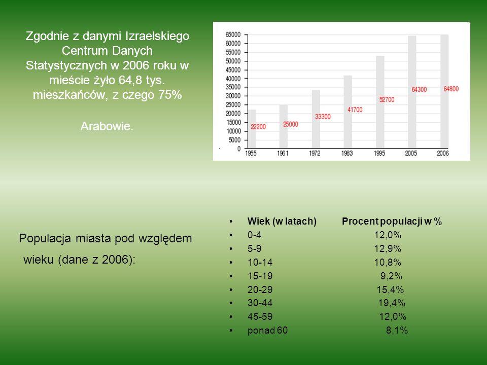 Populacja miasta pod względem wieku (dane z 2006):