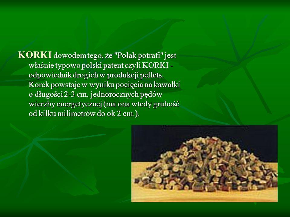 KORKI dowodem tego, że Polak potrafi jest właśnie typowo polski patent czyli KORKI - odpowiednik drogich w produkcji pellets.