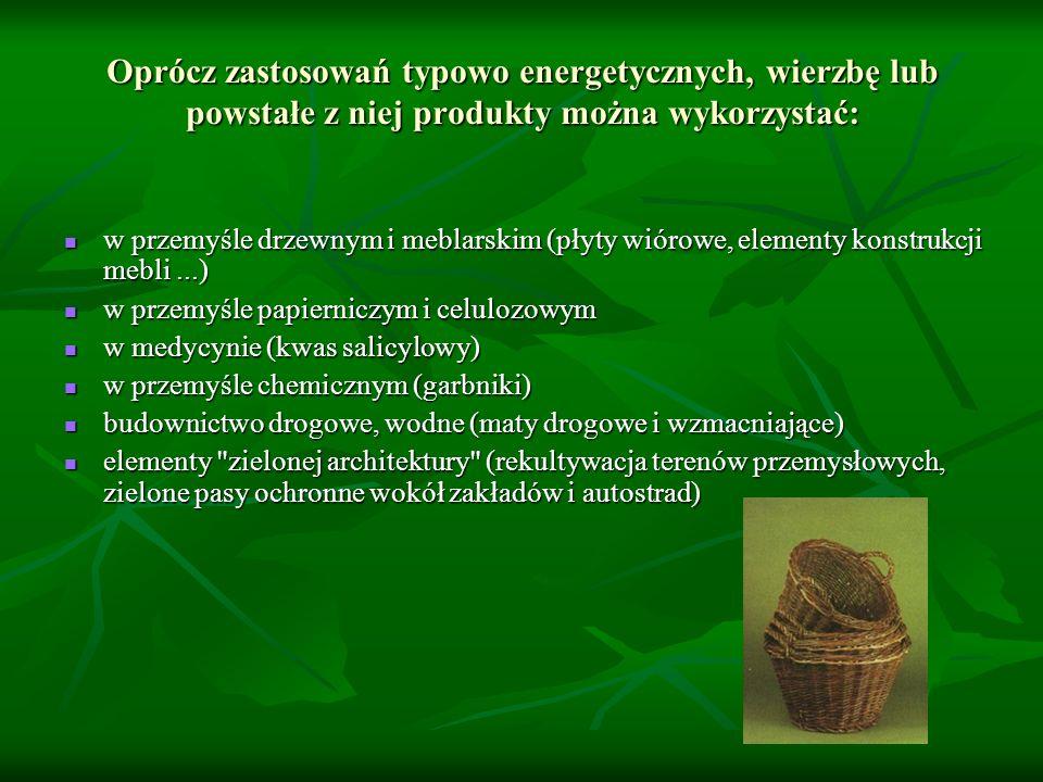 Oprócz zastosowań typowo energetycznych, wierzbę lub powstałe z niej produkty można wykorzystać: