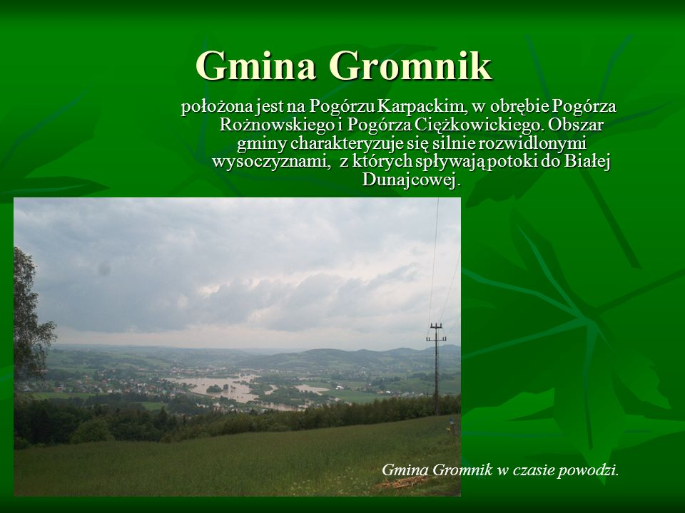 Gmina Gromnik