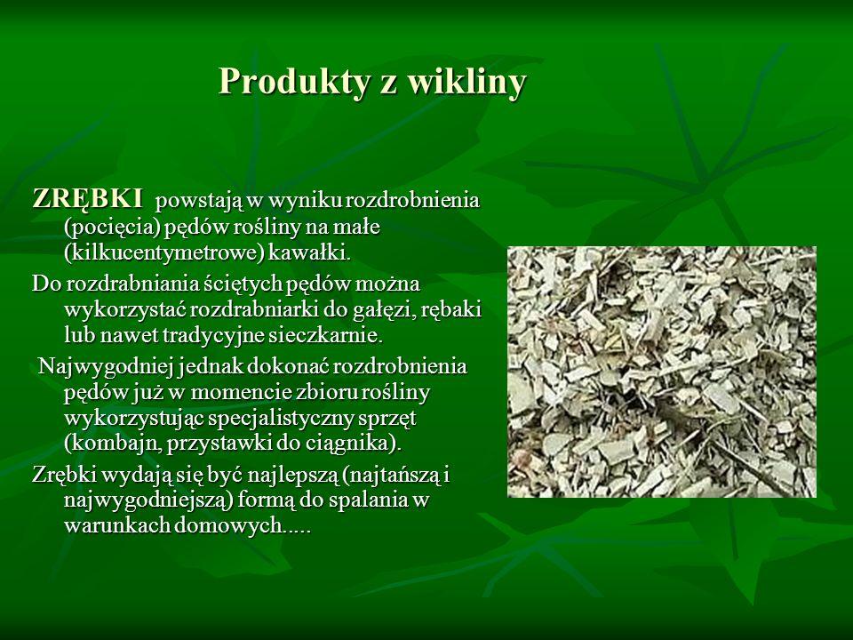 Produkty z wikliny ZRĘBKI powstają w wyniku rozdrobnienia (pocięcia) pędów rośliny na małe (kilkucentymetrowe) kawałki.