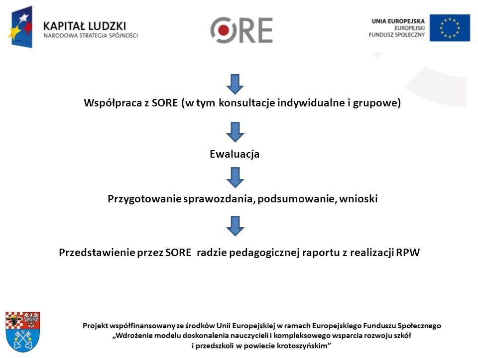 Współpraca z SORE (w tym konsultacje indywidualne i grupowe)