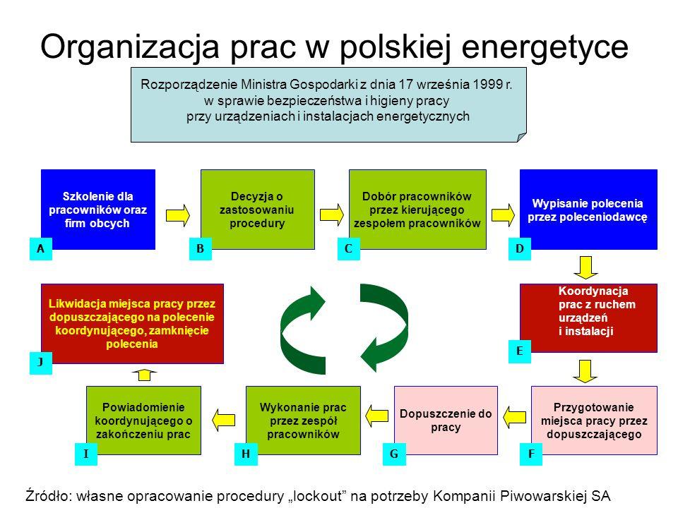 Organizacja prac w polskiej energetyce