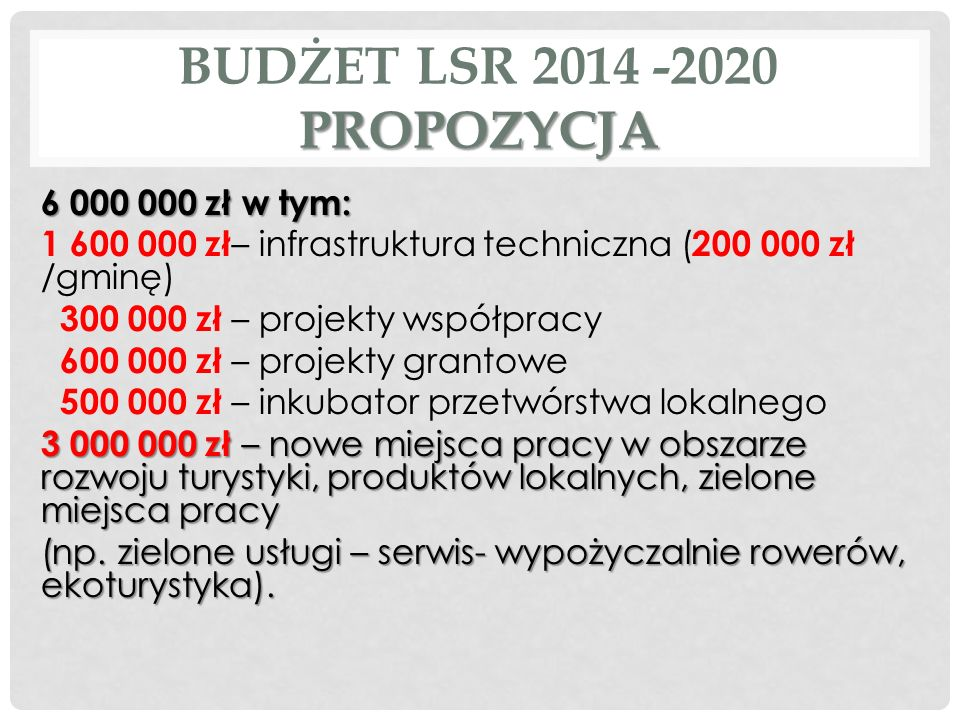 BUDŻET LSR 2014 -2020 PROPOZYCJA