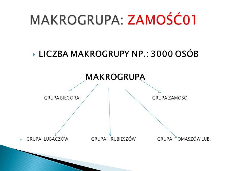LICZBA MAKROGRUPY NP.: 3000 OSÓB