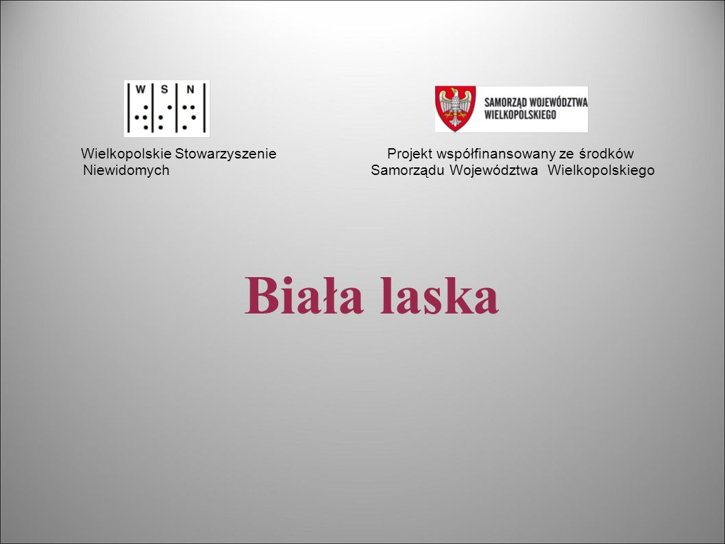 Wielkopolskie Stowarzyszenie Projekt współfinansowany ze środków