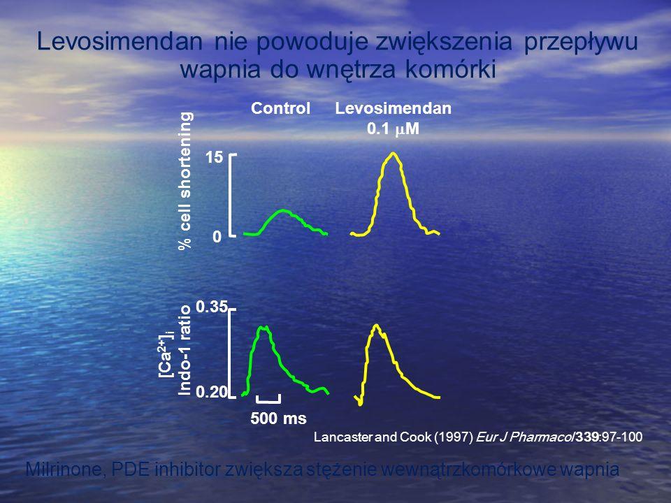 Levosimendan nie powoduje zwiększenia przepływu wapnia do wnętrza komórki