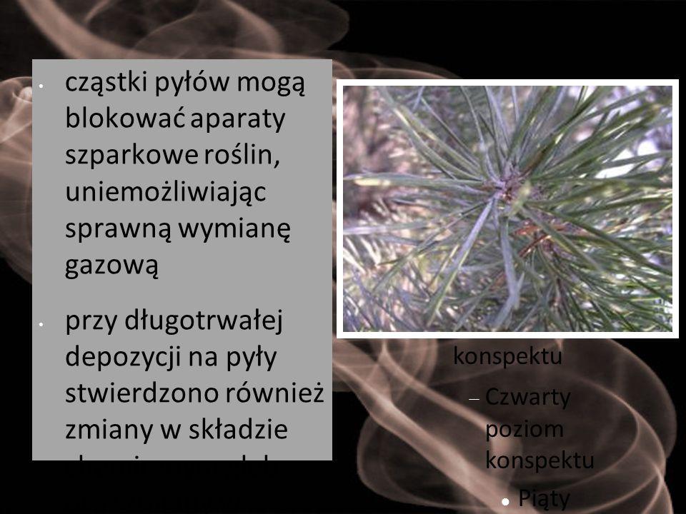 cząstki pyłów mogą blokować aparaty szparkowe roślin, uniemożliwiając sprawną wymianę gazową
