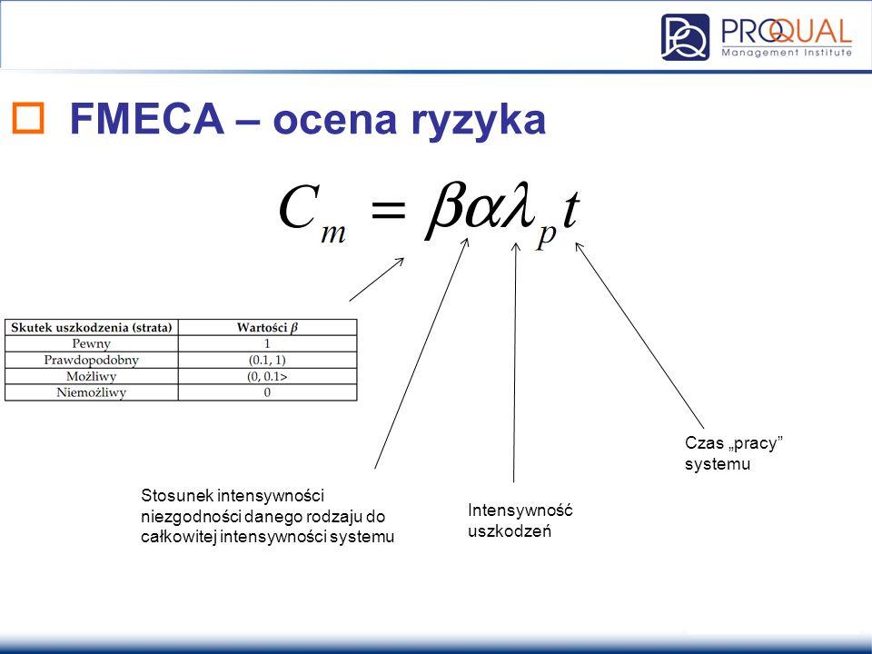 """FMECA – ocena ryzyka Czas """"pracy systemu"""