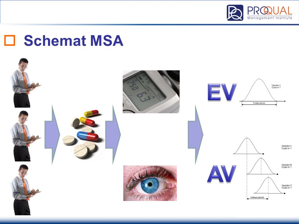 Schemat MSA EV AV