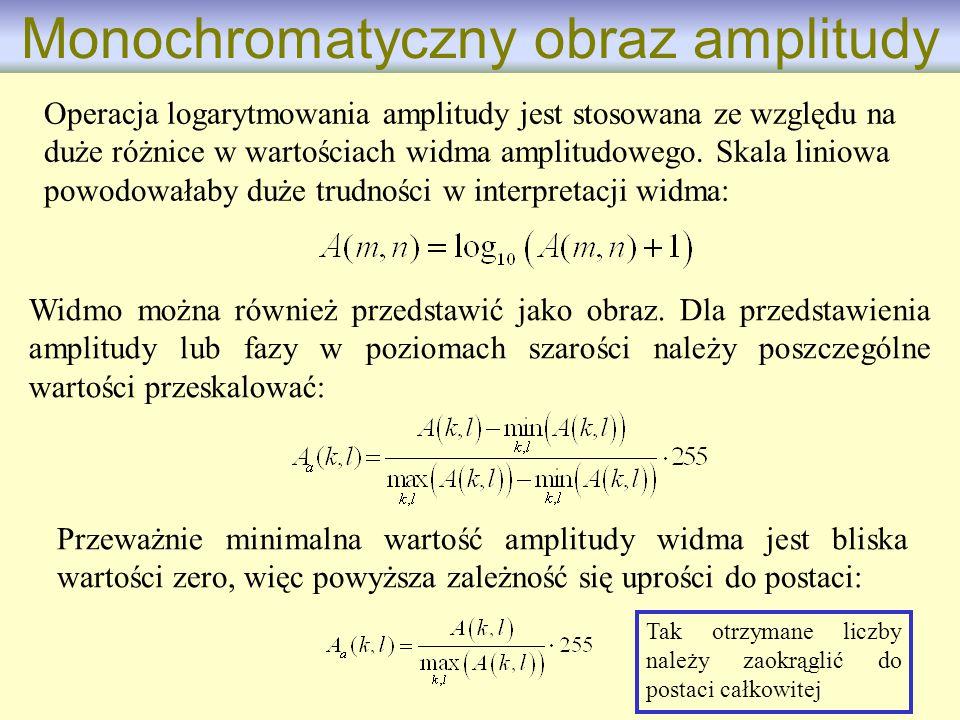 Monochromatyczny obraz amplitudy