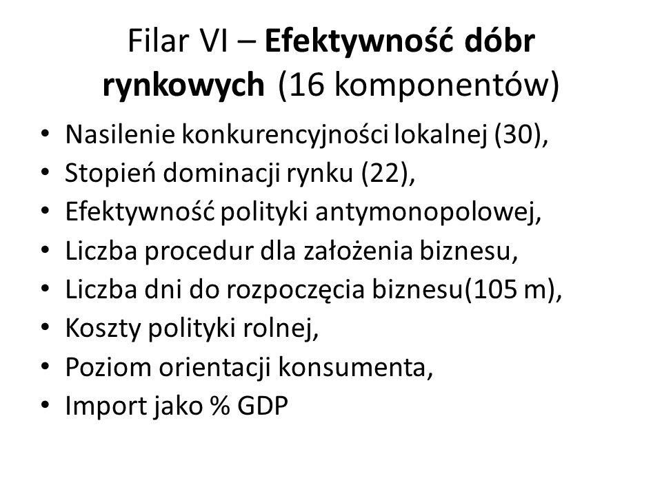 Filar VI – Efektywność dóbr rynkowych (16 komponentów)