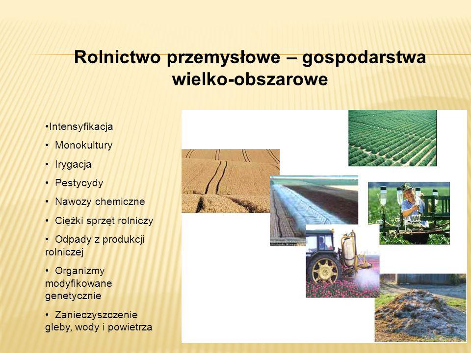 Rolnictwo przemysłowe – gospodarstwa wielko-obszarowe