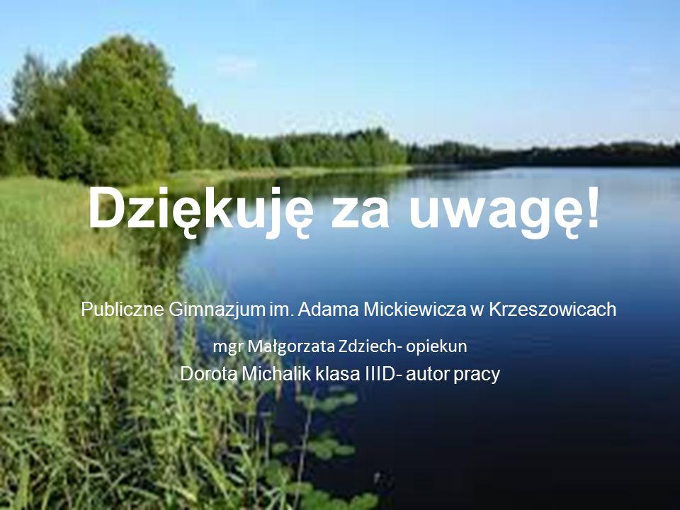 Publiczne Gimnazjum im. Adama Mickiewicza w Krzeszowicach