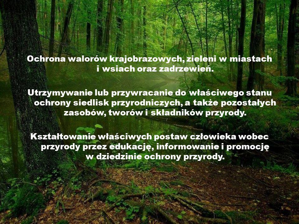 Ochrona walorów krajobrazowych, zieleni w miastach i wsiach oraz zadrzewień.