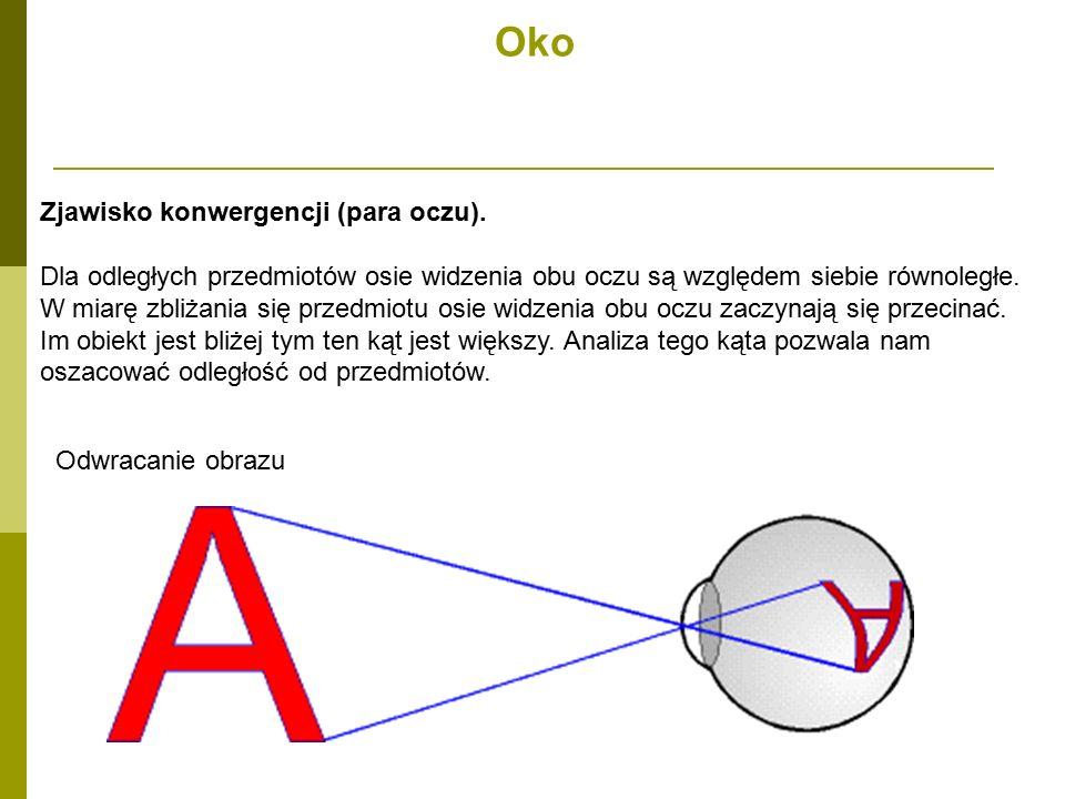 Oko Zjawisko konwergencji (para oczu).