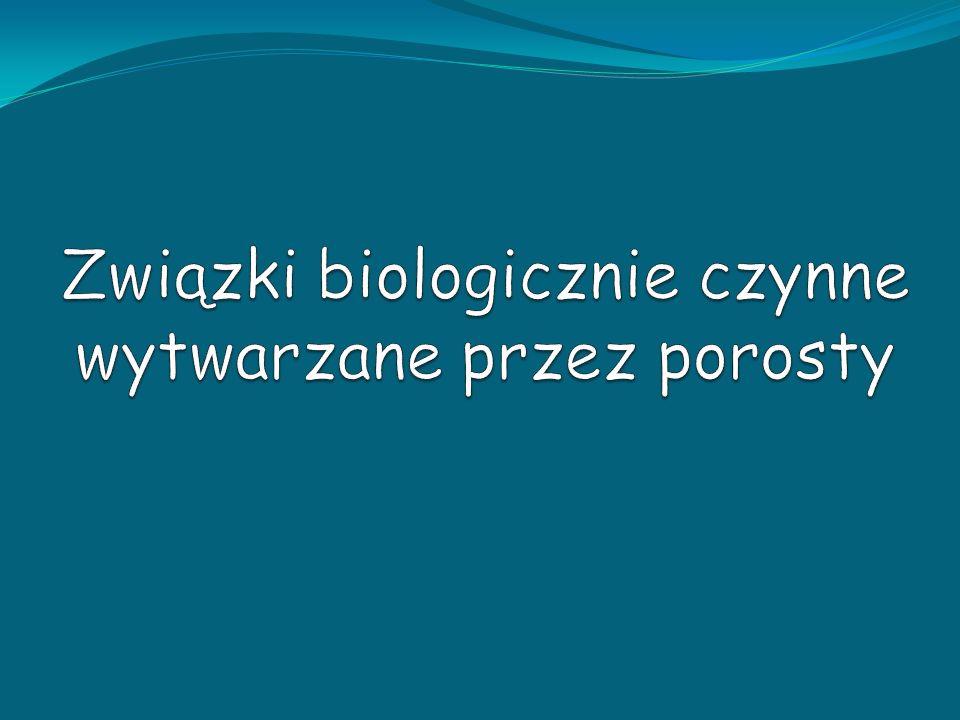 Związki biologicznie czynne wytwarzane przez porosty