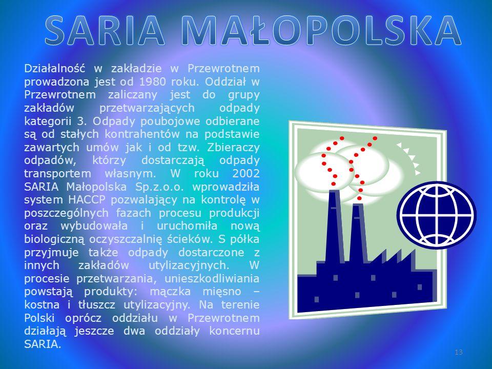 SARIA MAŁOPOLSKA