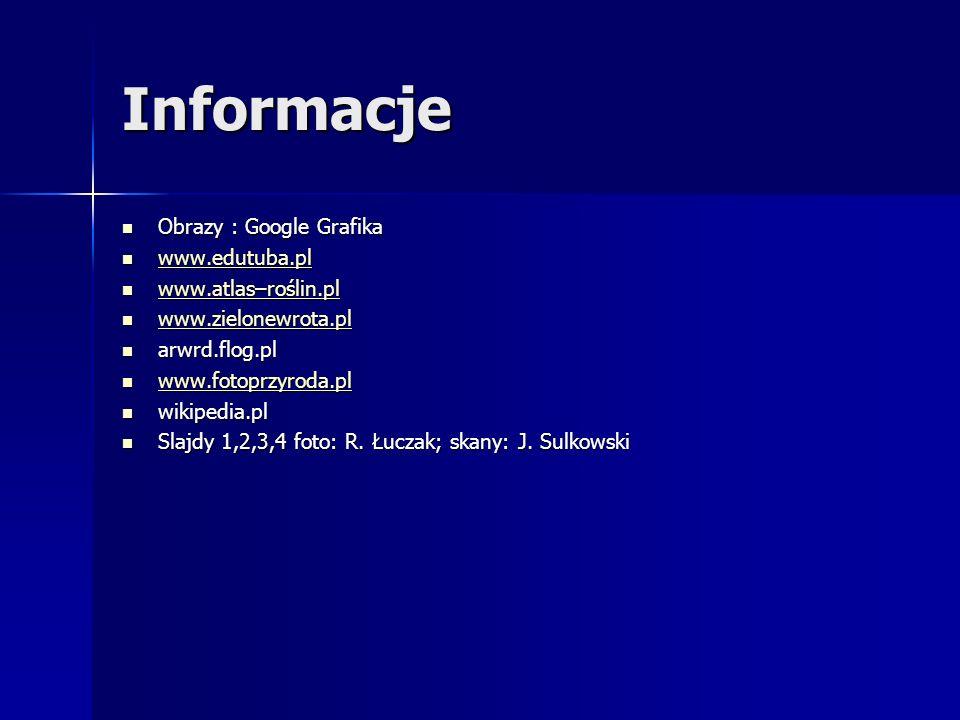 Informacje Obrazy : Google Grafika www.edutuba.pl www.atlas–roślin.pl