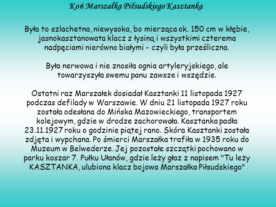 Koń Marszałka Piłsudskiego Kasztanka