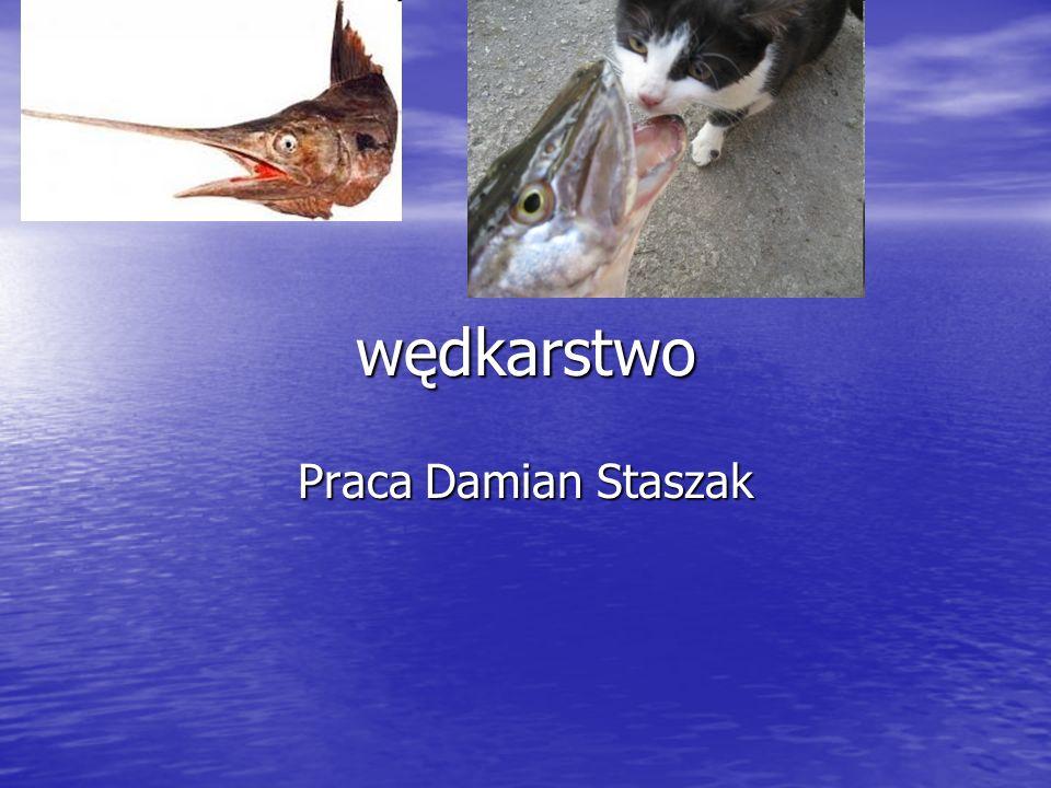 wędkarstwo Praca Damian Staszak