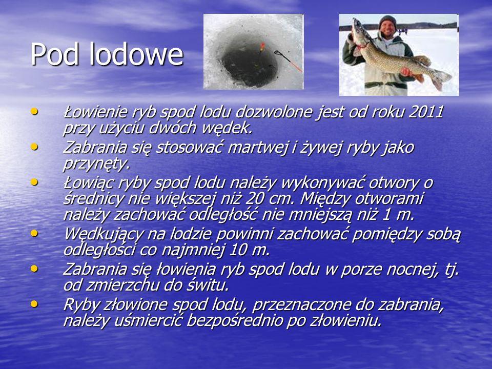 Pod lodowe Łowienie ryb spod lodu dozwolone jest od roku 2011 przy użyciu dwóch wędek. Zabrania się stosować martwej i żywej ryby jako przynęty.