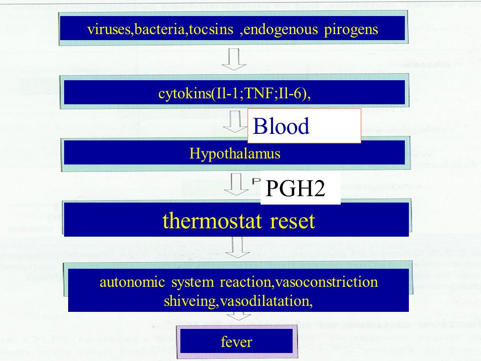Blood PGH2 viruses,bacteria,tocsins ,endogenous pirogens